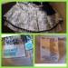Продам Юбка Children Wear