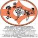 Предложение: Спортивная секция каратэ