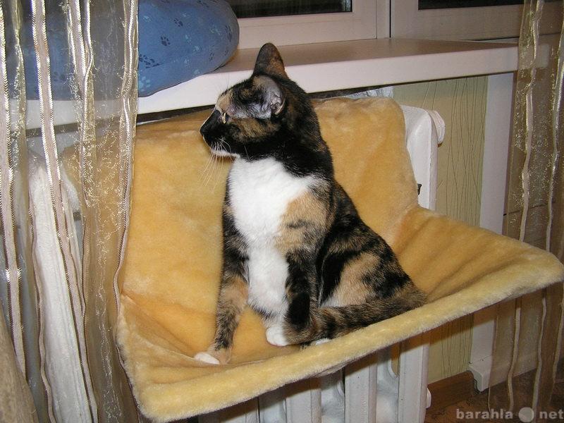 Продам Меховые гамаки для кошек на батарею