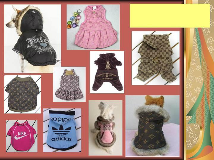 Продам: Одежда для собак оптом