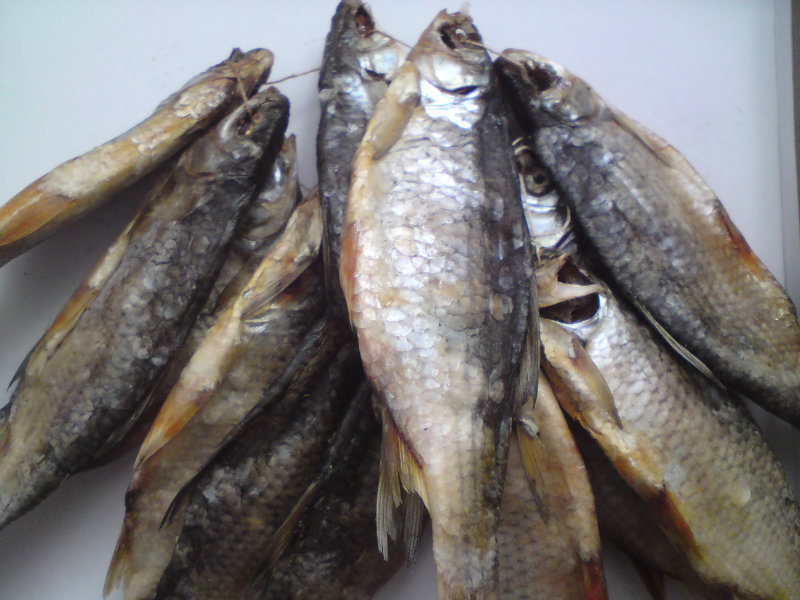 Продам Вяленная рыба (Лещ, Плотва)