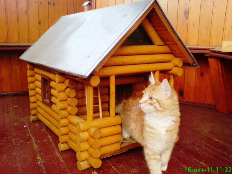 Продам Кошкин дом - будка