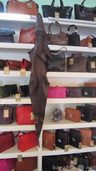 Предложение: Сумки,ремни,кошельки,из крокодила змеи