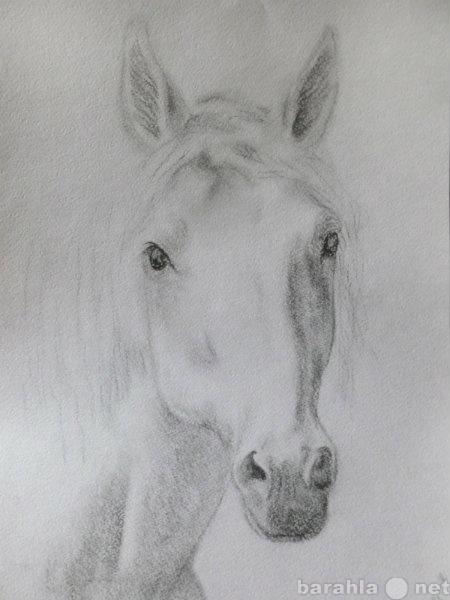 Продам Продаю картины лошадей дешево