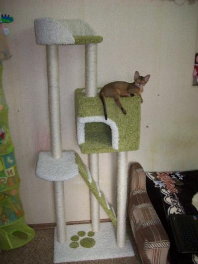 Когтеточка для кошек с домиком своими руками