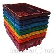 Куплю Купим ящики, контейнеры пластиковые. Все