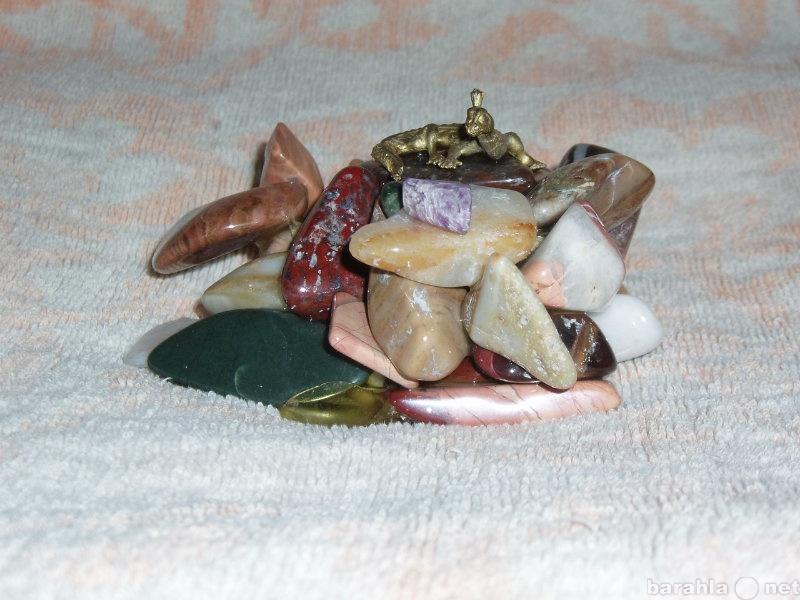 Продам Змейка на камнях