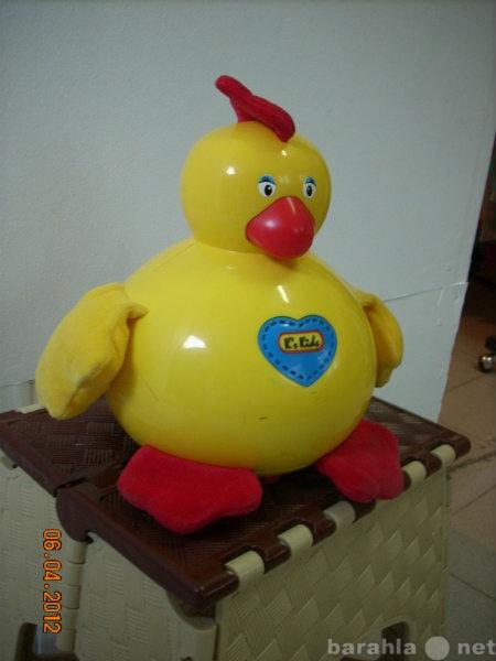Продам Курица  ко кидс . едет и высиживает яйца