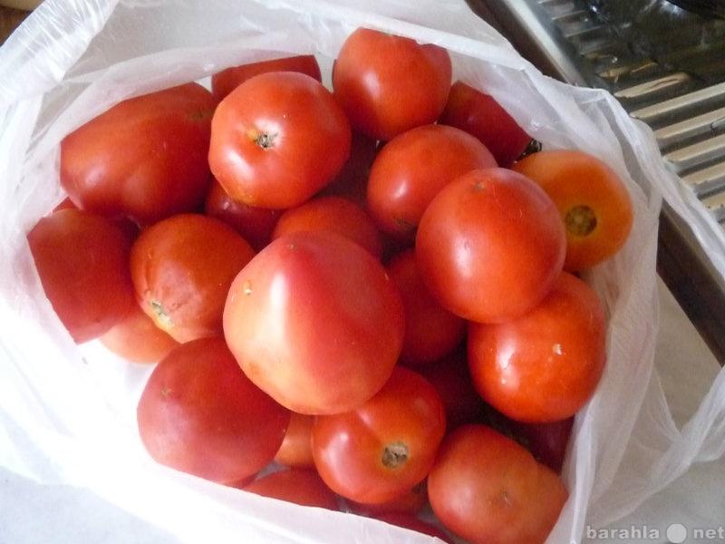 Продам Кабачки,помидоры