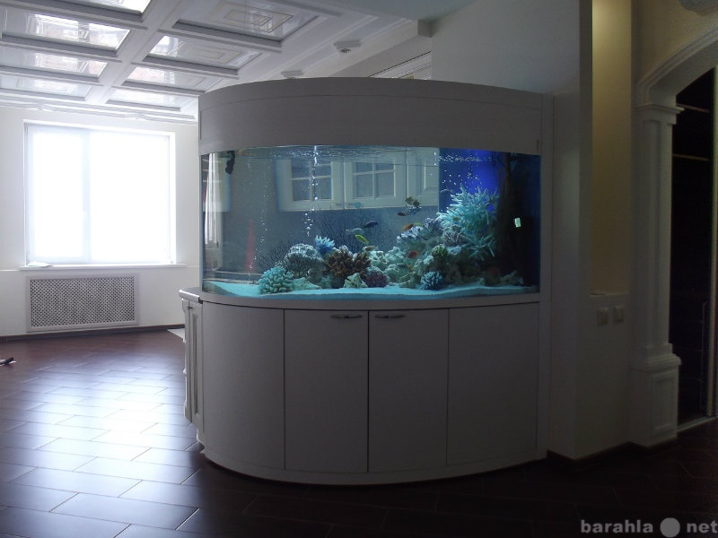 Продам Аквариумы, рыбки, оборудование