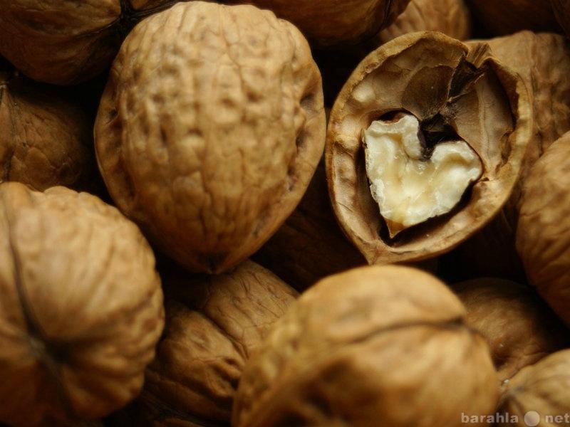 Продам: грецкие орехи