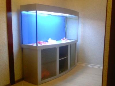 Продам Панорамный аквариум 500 л. в Москве - Барахла.Нет в Москве
