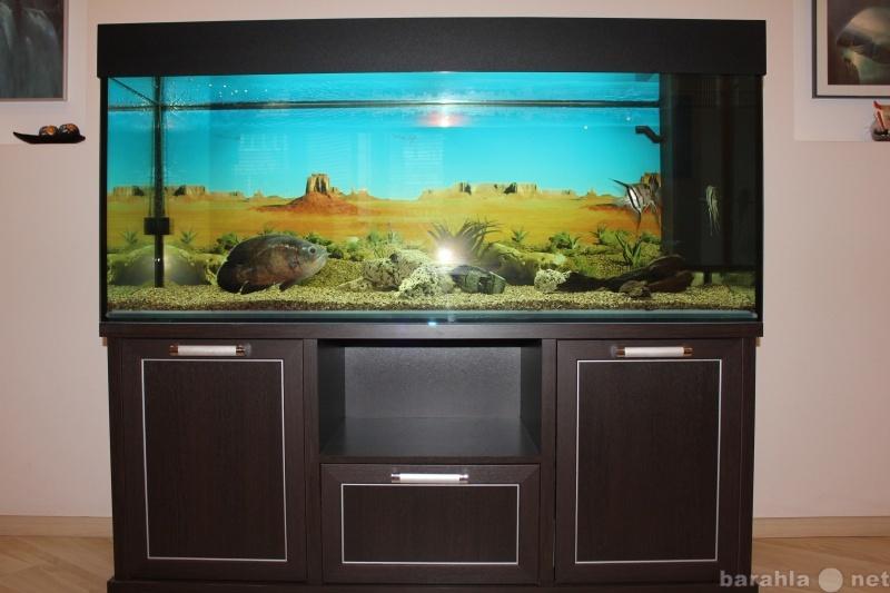 Продам аквариум 500л