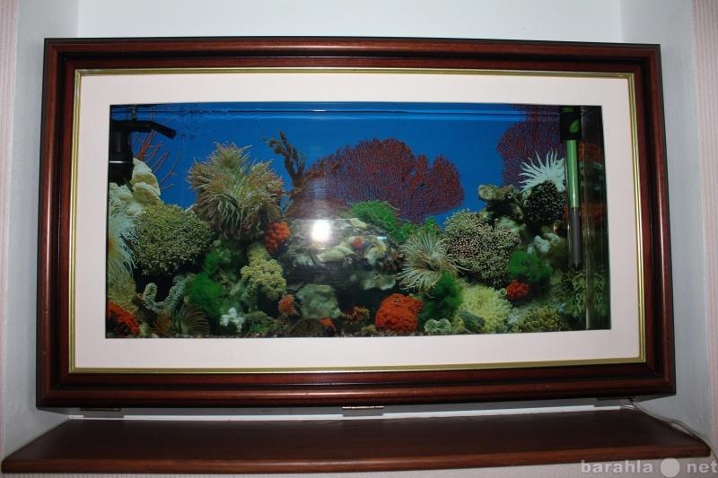 Продам аквариум-картина