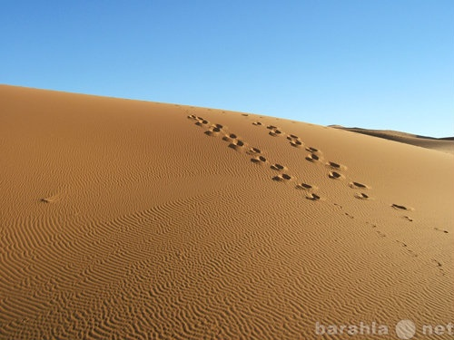 Продам Песок, щебень, ОПГС, чернозем, грунт
