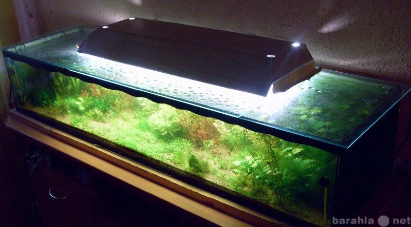 Продам Нестандартный аквариум