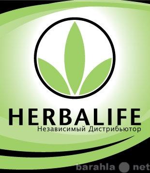 Продам кальций Гербалайф Ставрополь