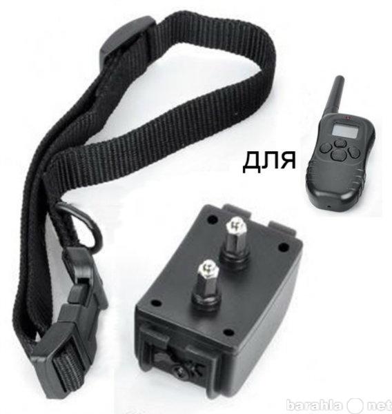 Продам Приёмник для электронного ошейника 998DR