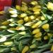 Продам Тюльпаны,Розы, Хризантемы оптом.