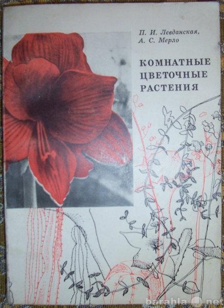 Продам: Комнатные цветочные растения