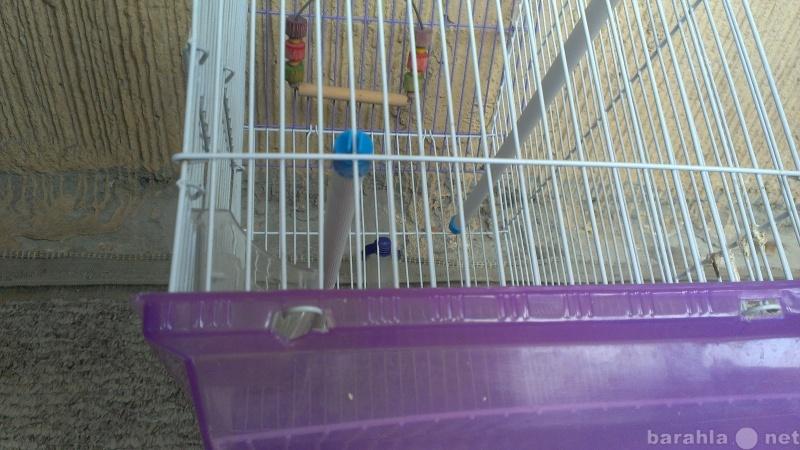 Отдам даром Клетка для попугая бу