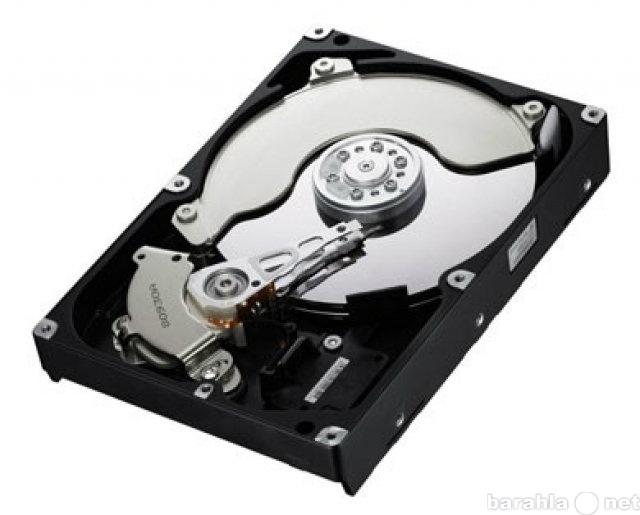 Куплю жесткий диск