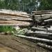 Продам дрова строительные 8910-138-65-04 в Нижнем Новгороде