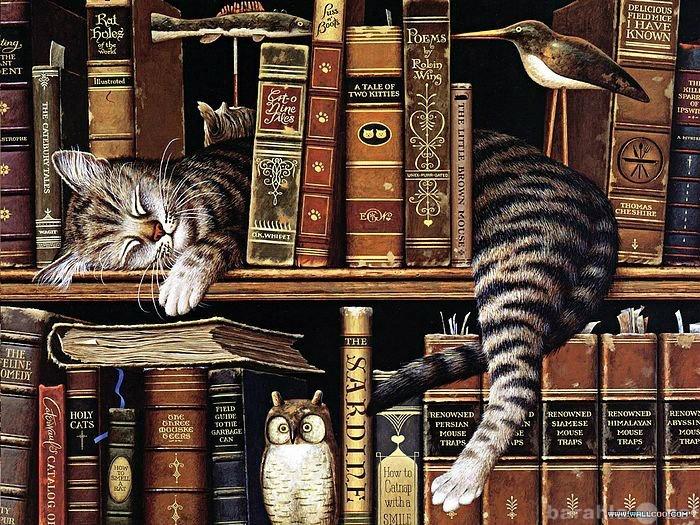 Куплю: Книги до 1917 года.