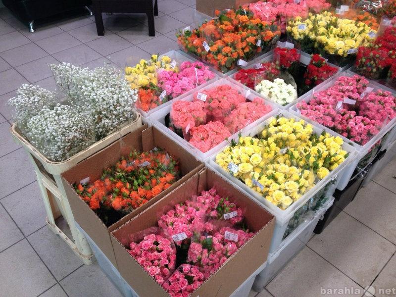 Где купить цветы оптом спб дешевле