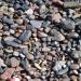 Продам продажа доставка пескогравия( пгс)