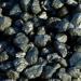 Продам Уголь, дрова с доставкой вездеходом