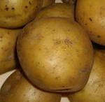 Продам Картофель едовой