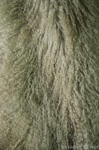 Предложение: Шкура тибетской ламы цвет олива