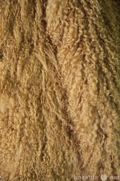 Предложение: Шкура тибетской ламы цвет табак