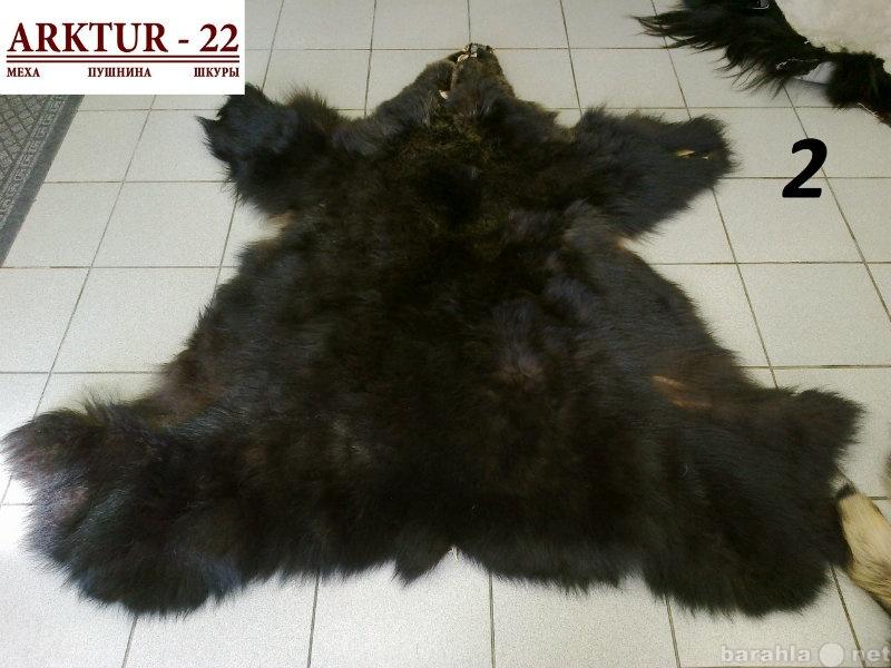 Предложение: Шкура медведя