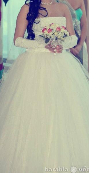 Куплю Свадебное платье