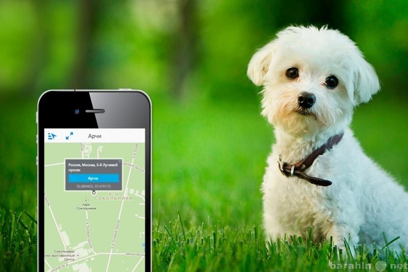 Продам GPS маячок для животных