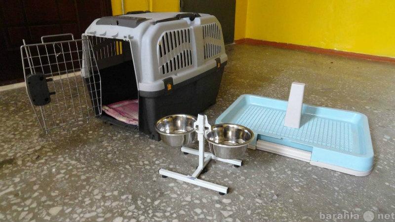 Продам Переноска для собак, туалет, миски