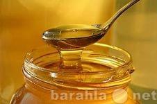 Продам Башкирский мёд липовый