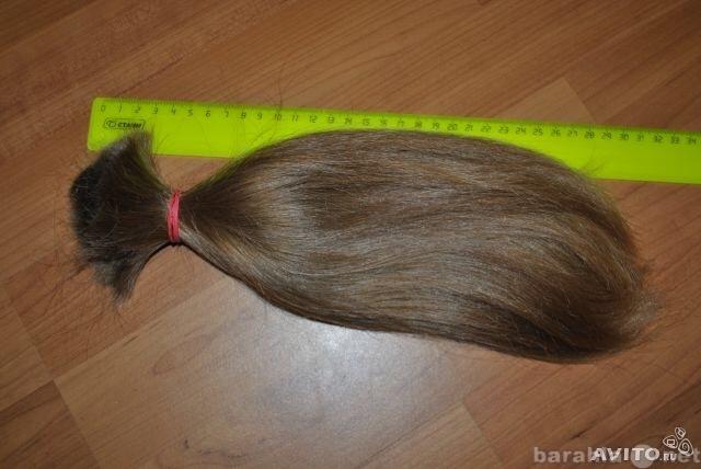 Купим волосы камышин