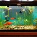 Продам 3 аквариума