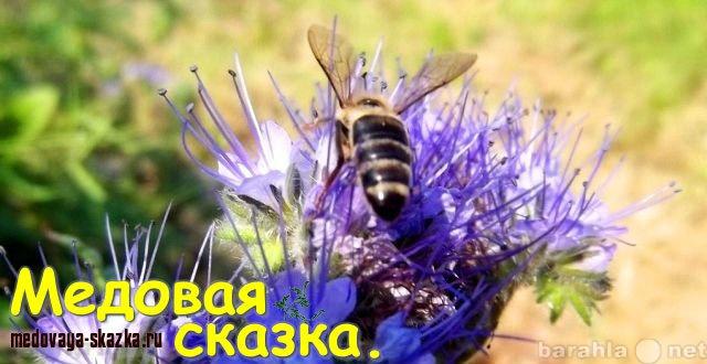 Продам Пчелопакеты и Пчелиные матки на 2019 год