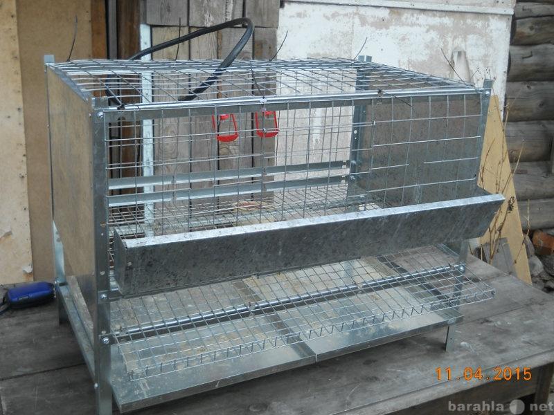 Продам: клетки для содержания кур