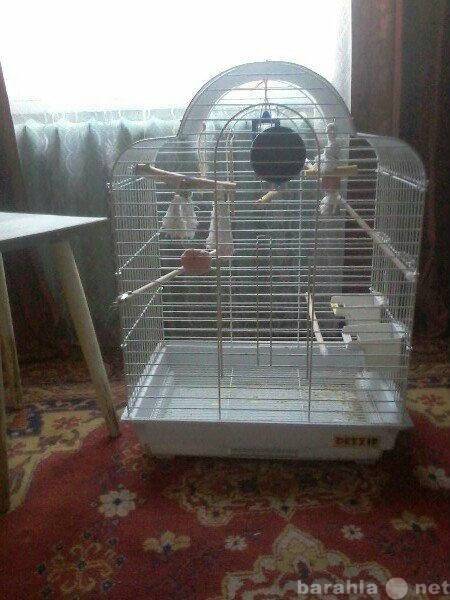 Продам клетка для попугая большая