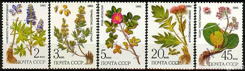 Продам Лекарственные растения Сибири 1985 СССР