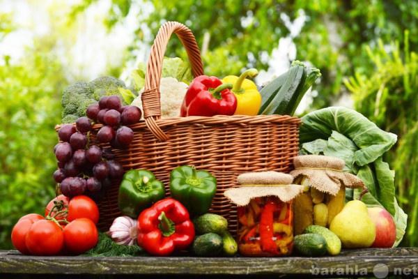 Куплю купим фрукты,овощи оптом
