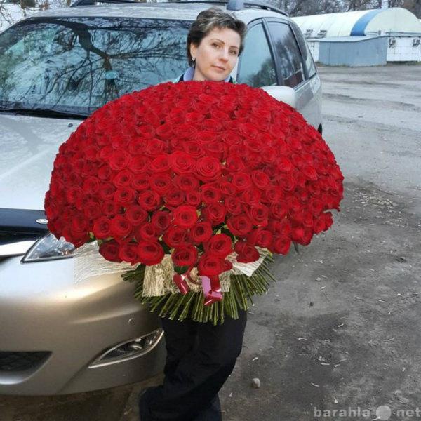Отдам даром Розы в Липецке