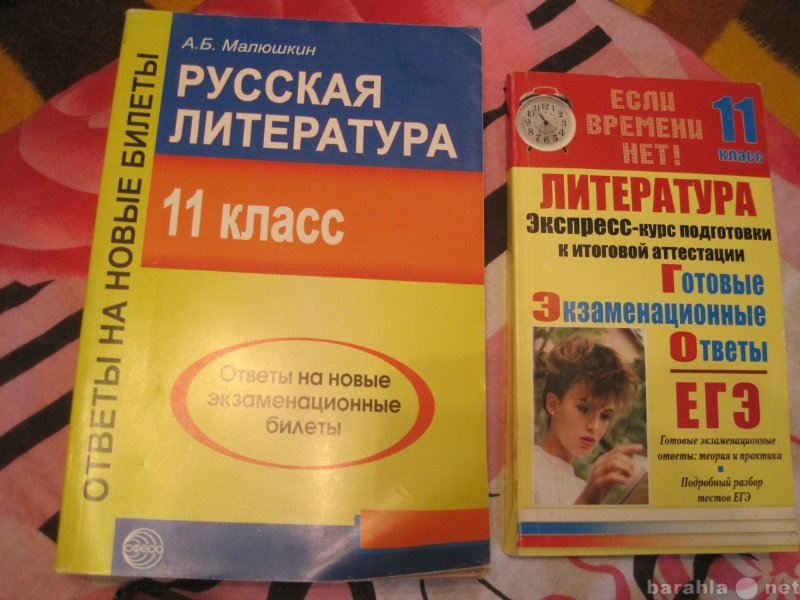 Продам Русская  литература 11 класс  Ответы на