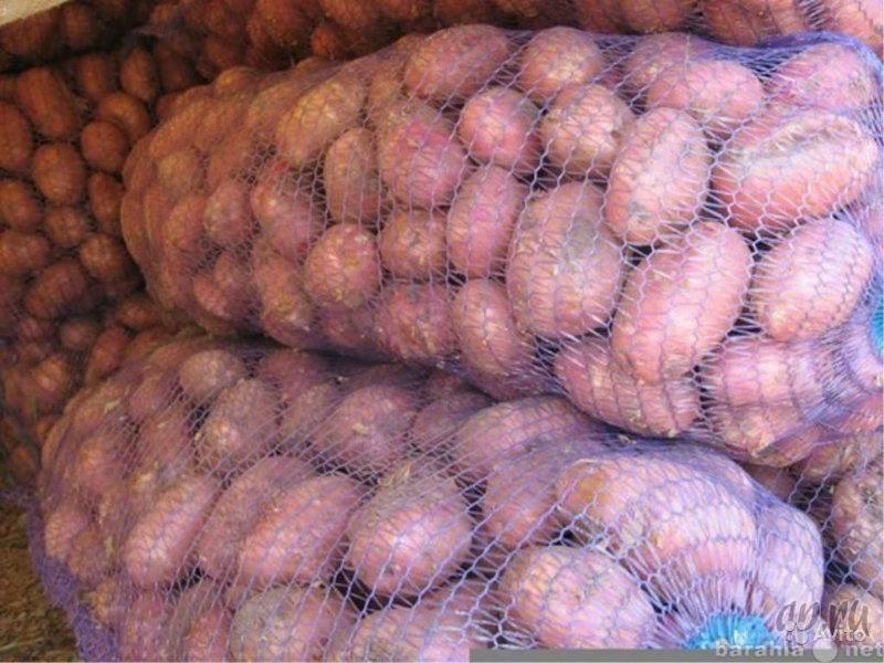 Продам Хороший Вкусный Картофель с дост