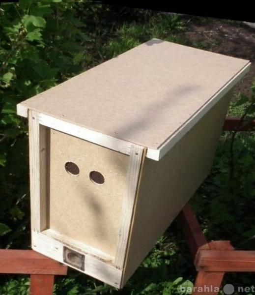 Продам Пчелопакеты,матки(карника,бакфаст)